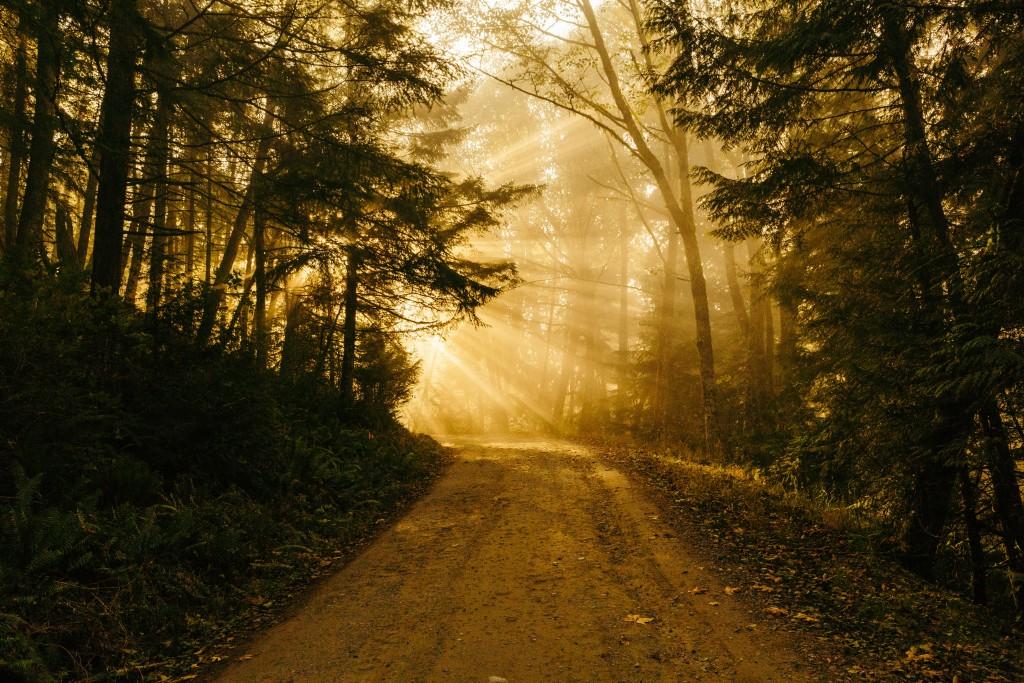Stoic Wisdom by Seneca – On Groundless Fears